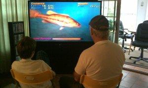 Video game fishing