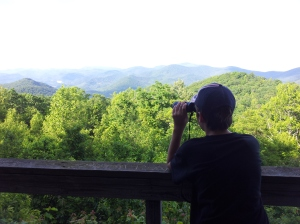 Barron checks out a scenic overlook with binoculars