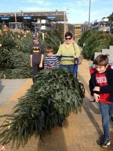 Buying our Christmas tree