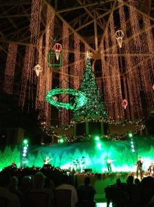 Luminescence show at Gaylord Palms Resort in Orlando