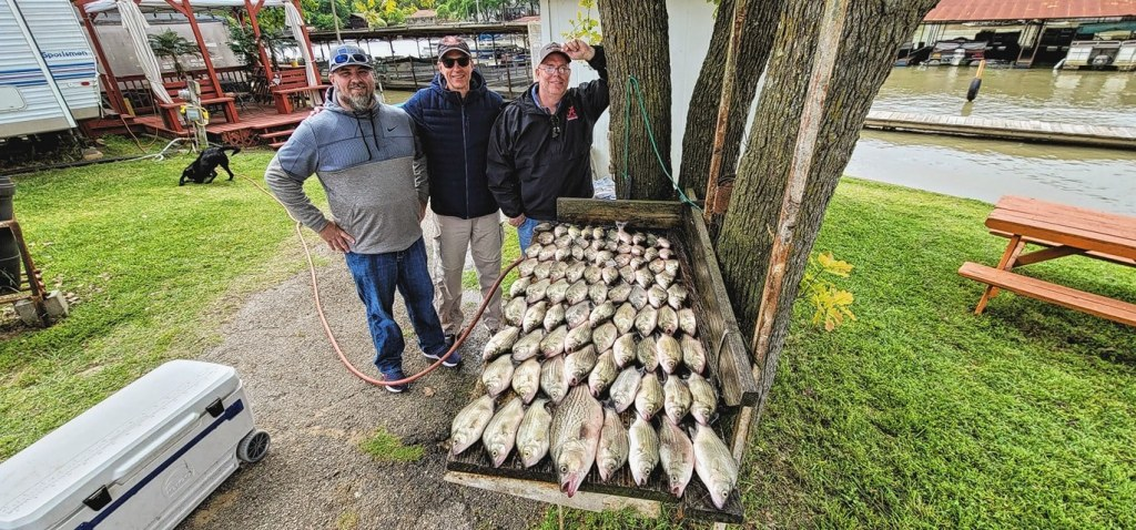 Lyle Wallace, Lance Wallace and Lee Wallace stand beside a wooden table covered with 81 bass laid out in rows.